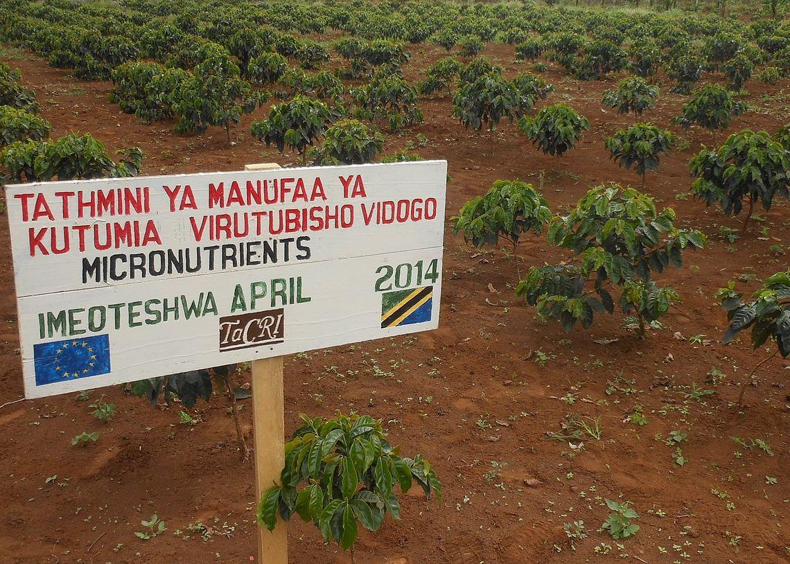 Tanzanian Coffee Research Institute (TaCRI)